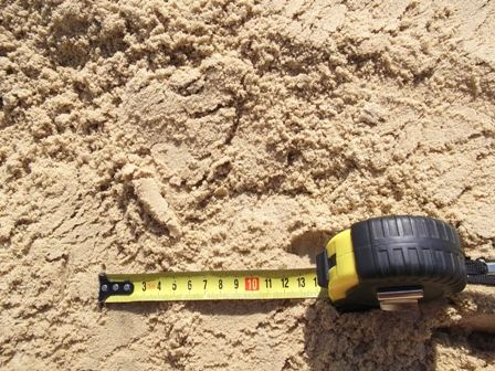 Песок желтый