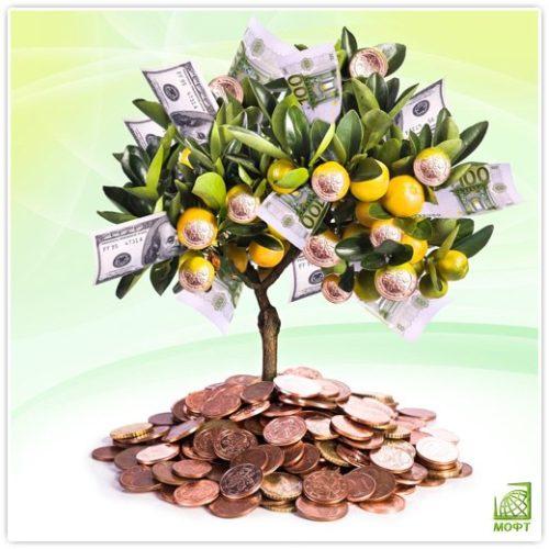 Помогу в получении кредита от 300 000 до 1 500 000 рублей максимально быстро