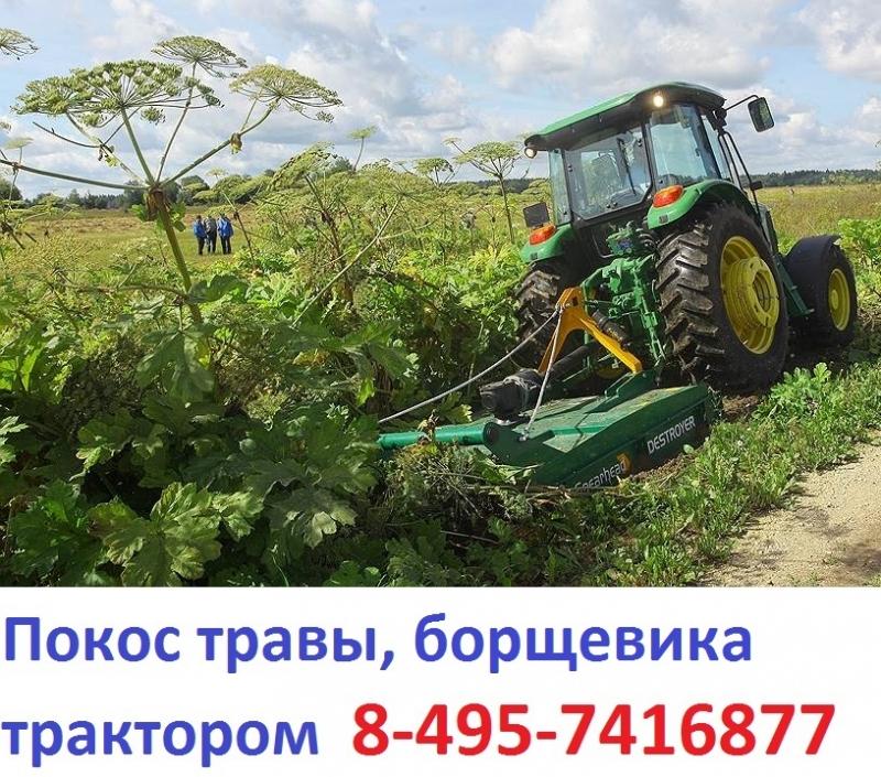 89637508470  Услуги трактора по покосу борщевика , покос бурьяна Московская область