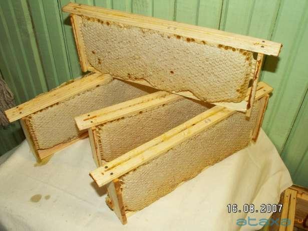 продаю правильный мед с собственной пасеки, мед светлый