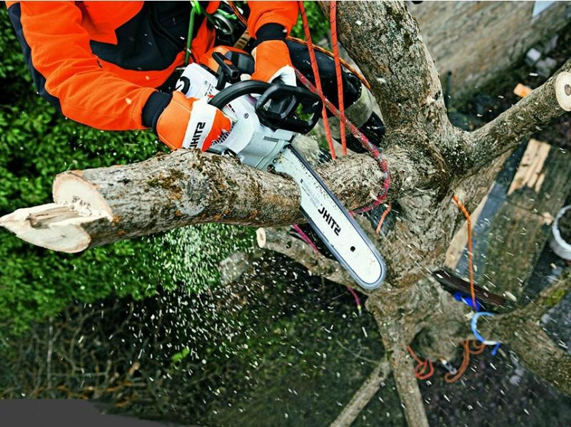Спил деревьев и расчистка участков Таганрог